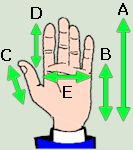 Hand measurements